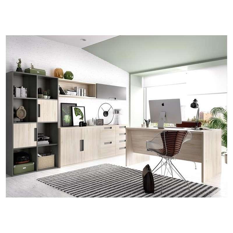 Conjunt per a despatx i oficina
